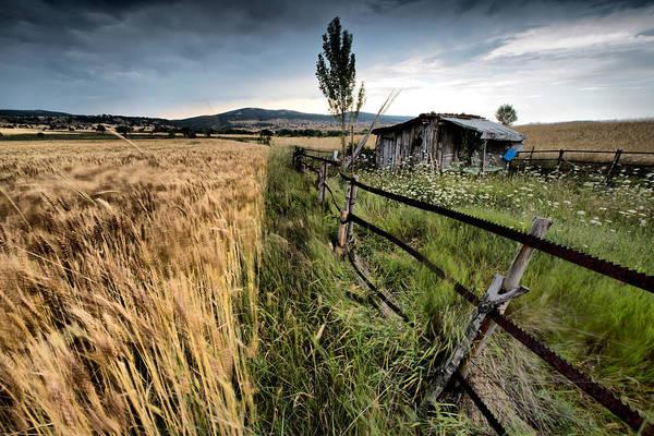 Photograph - Farm by Okan YILMAZ