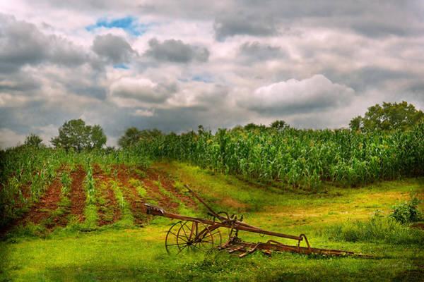 Photograph - Farm - Organic Farming by Mike Savad