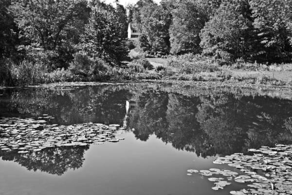 Photograph - Farm Pond Wat 257 by G L Sarti