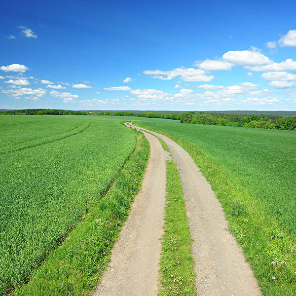 Environmental Issues Photograph - Farm Road Through Green Fields In by Avtg