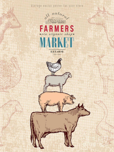 Market Wall Art - Digital Art - Farm Shop Vintage Poster Retro Butcher by Intueri