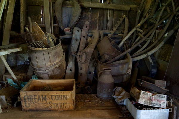 Photograph - Farm Tools by Kerri Mortenson