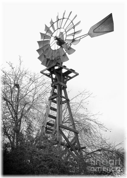 Photograph - Farm Windmill - Black And White by Carol Groenen