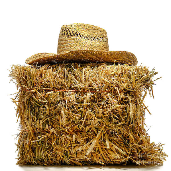 Top Hat Photograph - Farmer Hat On Hay Bale by Olivier Le Queinec