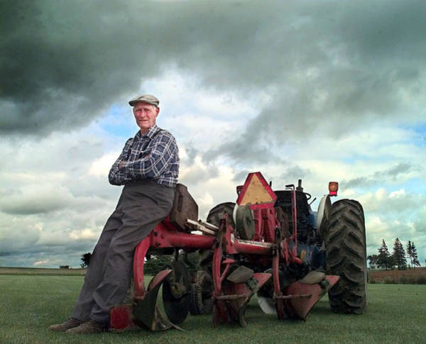 Photograph - Farmer Of The Year by Steve Somerville