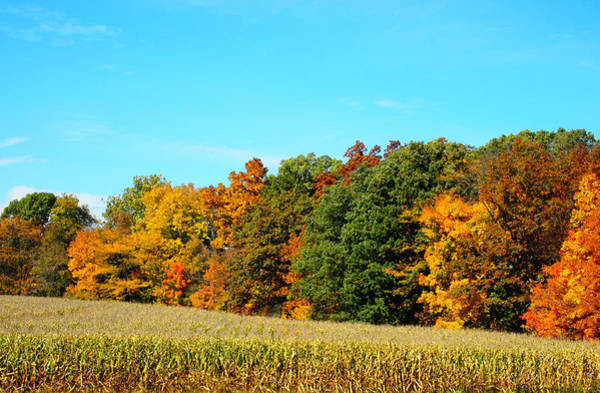 Wall Art - Photograph - Farmfield Fall by Dan Sproul