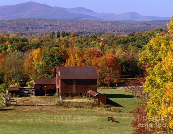 Photograph - Farmhouse In Fall by Rafael Macia