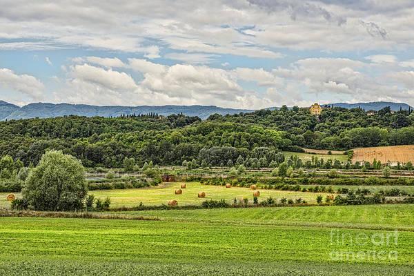 Digital Art - Farmland 1 by Mauro Celotti