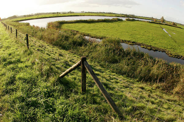 Drain Photograph - Farmland In Holland by Chris Martin-bahr/science Photo Library
