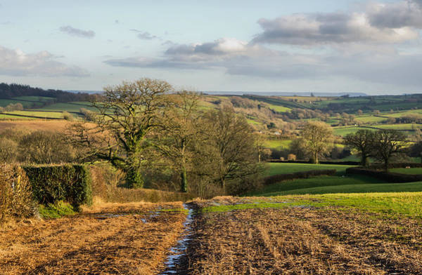 Photograph - Farmland In Mid Devon by Pete Hemington