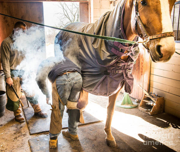 Photograph - Farrier10 by Jim DeLillo