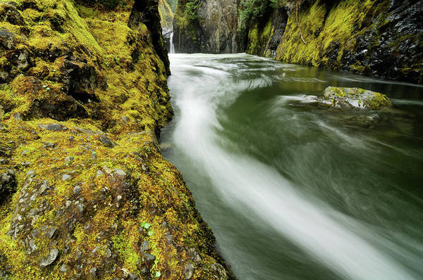 Vancouver Island Photograph - Fast Mountain Stream In Vancouver by Rezus