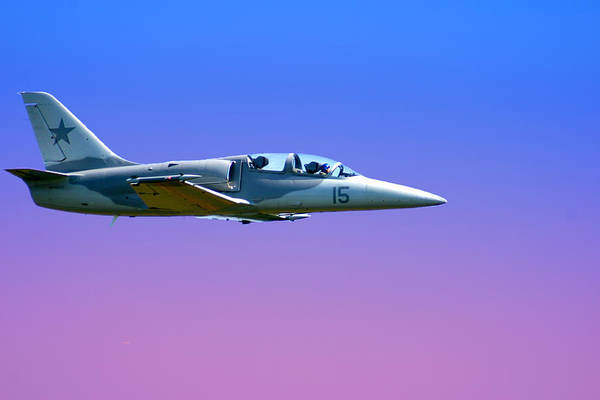 Wall Art - Photograph - Fast Mover by Frank Savarese