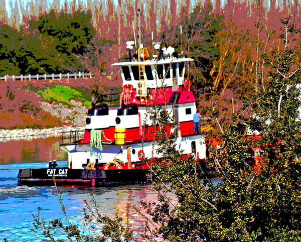 Photograph - Fat Cat On Steamboat Slough by Joseph Coulombe