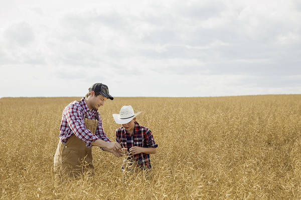 Father And Son Checking Wheat Crop Art Print by Hero Images