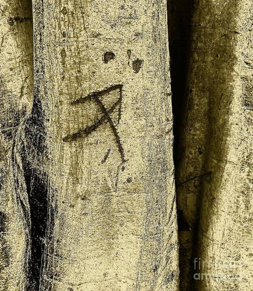 Wall Art - Photograph - Father Of Life by Fei A