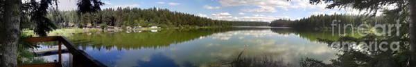 Photograph - Fawn Lake Panarama by Vivian Martin