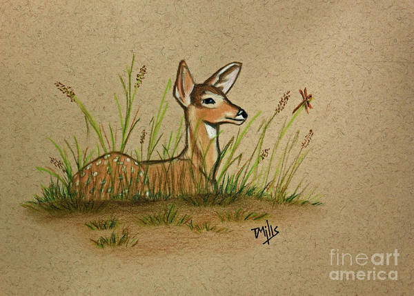 Weeds Drawing - Fawndly Remembered by Terri Mills