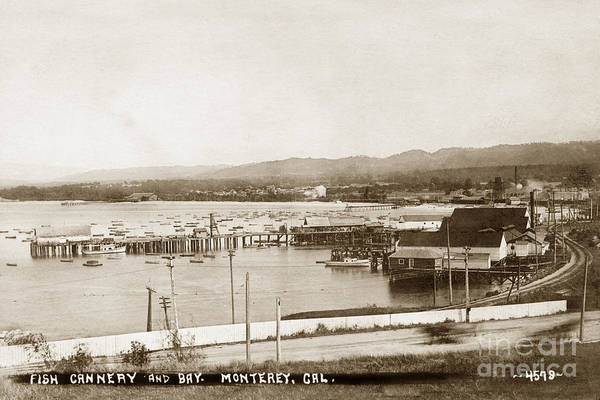 Photograph - F. E. Booth Cannery And Fishermans Wharf Looking East From The Lower Presidio 1910 by California Views Archives Mr Pat Hathaway Archives