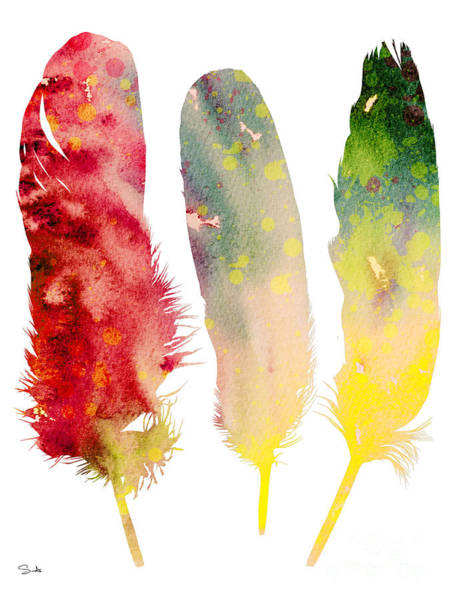 Animal Watercolor Wall Art - Painting - Feathers 5 by Watercolor Girl