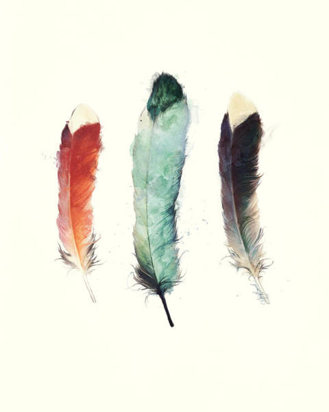 Wall Art - Painting - Feathers by Amy Hamilton