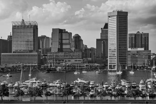 Photograph - Federal Hill View To The Baltimore Skyline Bw by Susan Candelario
