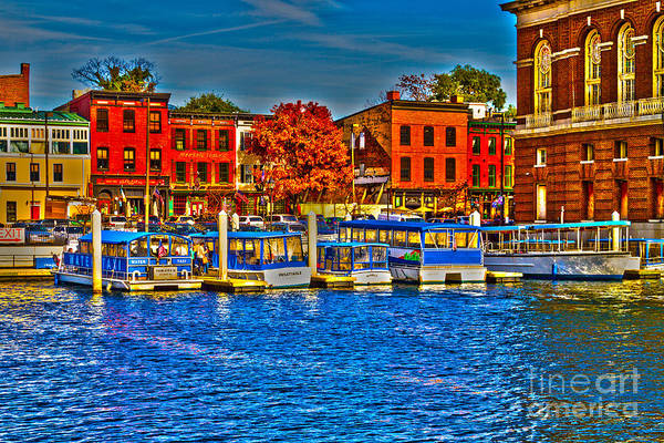 Photograph - Federal Hill Water Taxi by William Norton