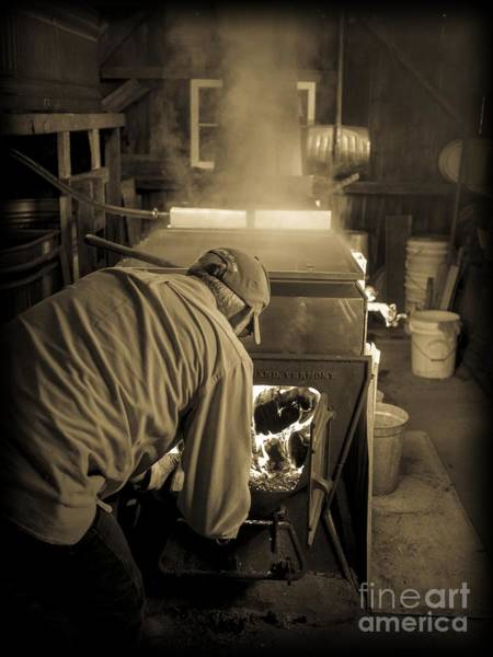 Photograph - Feeding The Beast by Edward Fielding