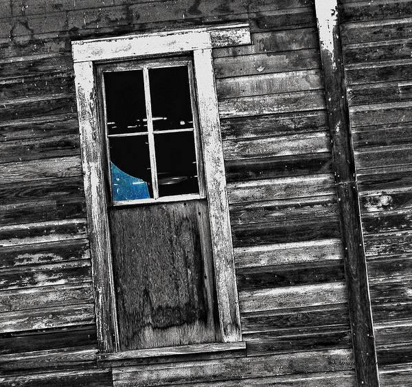 Photograph - Feeling Blue by Susan Kinney