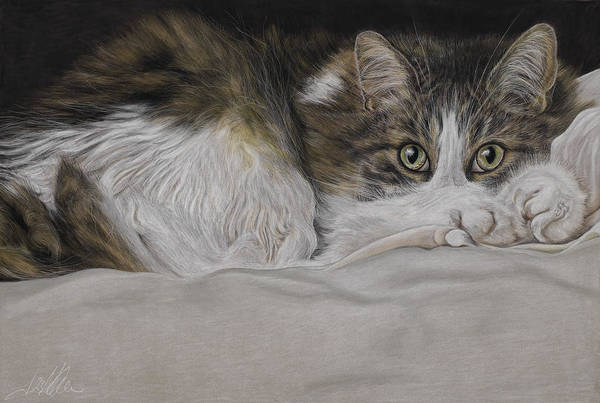 Painting - Feline Eyes by Terry Kirkland Cook