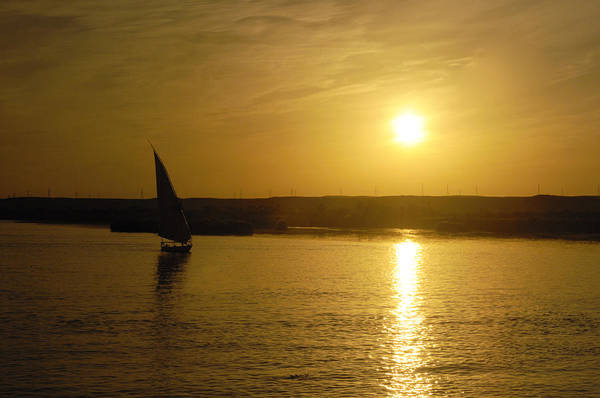Photograph - Felucca On The Sunset Nile by Brenda Kean