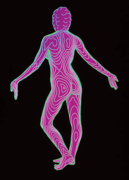 Contour Photograph - Female Body Map by Dr Robin Williams/science Photo Library