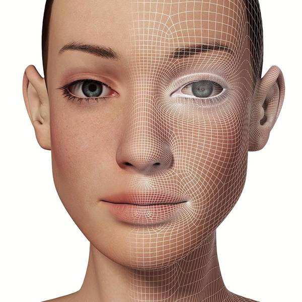 Wireframe Photograph - Female Head With Biometric Facial Map by Alfred Pasieka