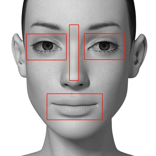 Wireframe Photograph - Female Head With Biometric Markers by Alfred Pasieka