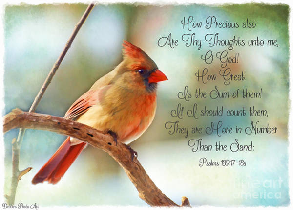 Wall Art - Photograph - Female Northern Cardinal With Verse by Debbie Portwood