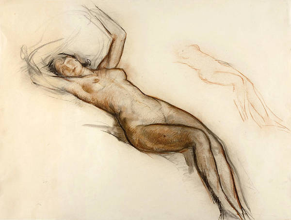 Chestnut Hair Drawing - Female Nude by Ricard Canals
