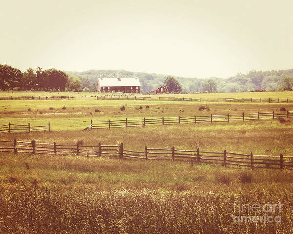 Wall Art - Photograph - Fence And Field by Emily Kelley