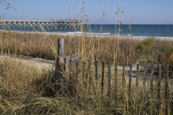 Photograph - Fence By The Dunes by MM Anderson