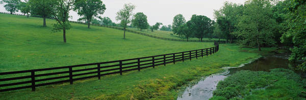 Horse Farm Photograph - Fence In A Field, Woodford County by Panoramic Images