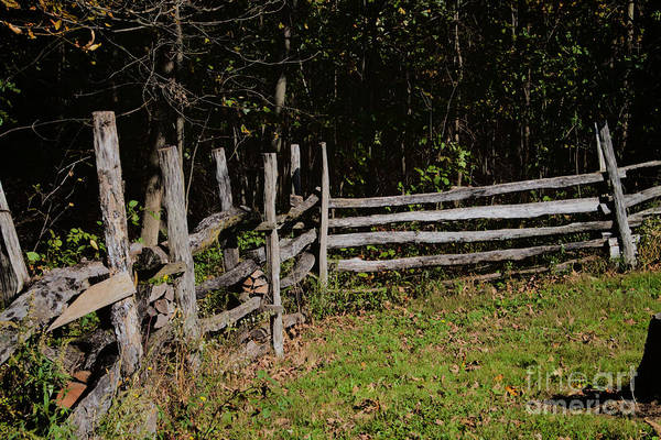 Photograph - Fence Line by William Norton