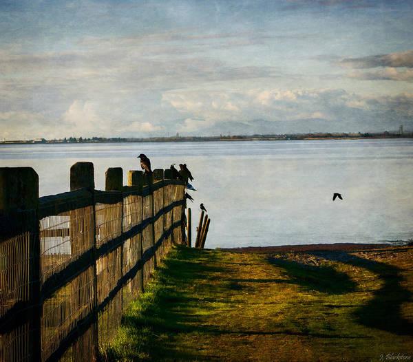 Photograph - Fence Of Trust by Jordan Blackstone