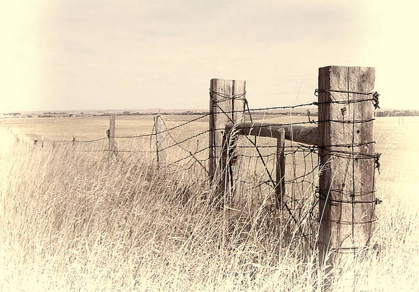 Photograph - Fence On The Prairie by HW Kateley