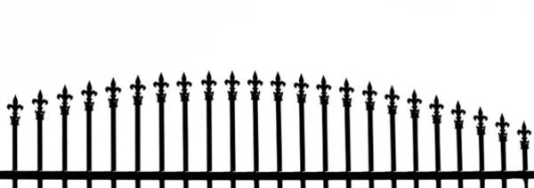 Iron Fence Wall Art - Photograph - Fenceline by Rebecca Cozart
