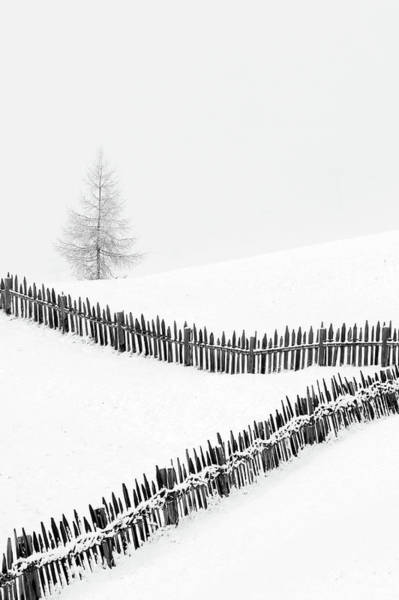Fences Wall Art - Photograph - Fences: Playing With Lines by Vito Miribung