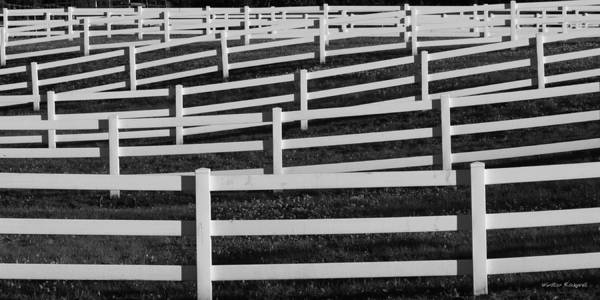 Wall Art - Photograph - Fences by Winston Rockwell