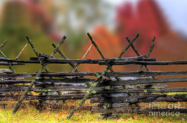 Photograph - Fencing In Autumn Colors by Dan Friend