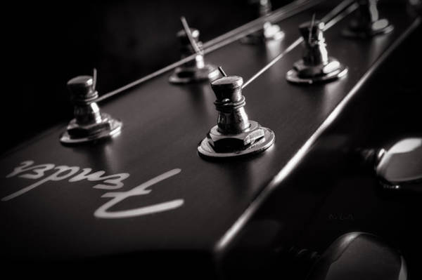 Photograph - Fender Acoustic I by Bob Orsillo