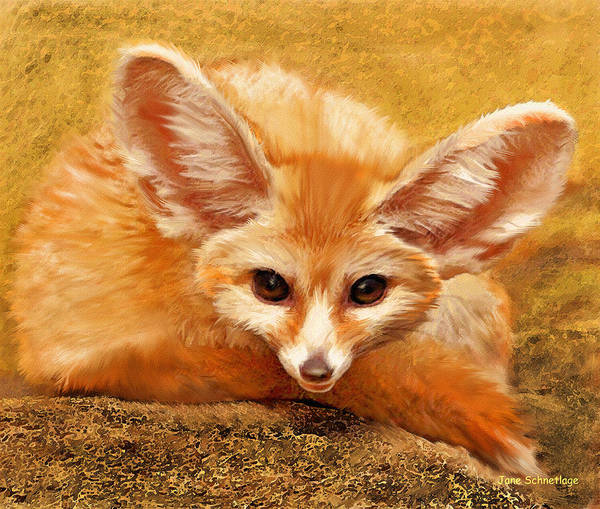Foxes Digital Art - Fennec Fox by Jane Schnetlage