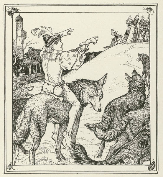 Wall Art - Drawing - Ferko Leads The Wolves by Mary Evans Picture Library