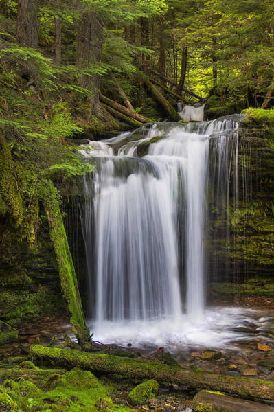 Plunge Photograph - Fern Falls by Mark Kiver